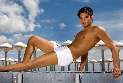 dingdong dantes boxer briefs underwear