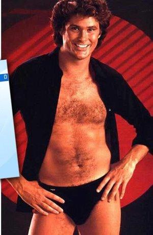David Hasselhoff bikini speedo