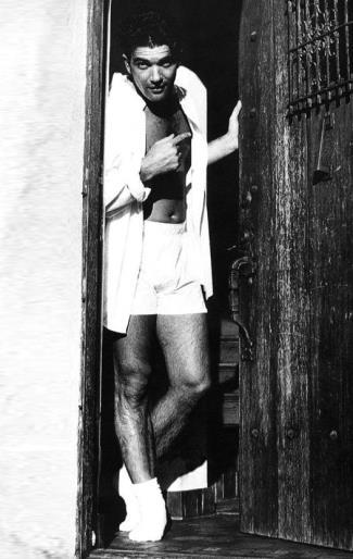 antonio banderas underwear boxer shorts