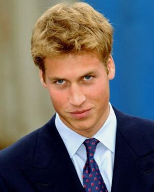 Prince William Long Sexy Hair