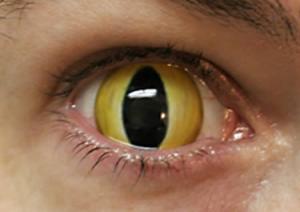 best contact lens