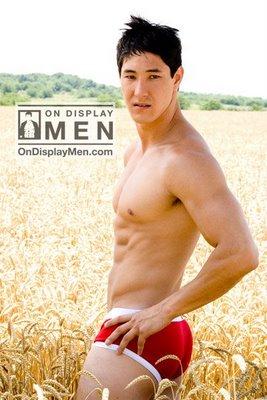 red underwear briefs for men - jason pond