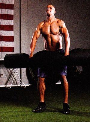 Miles Austin body