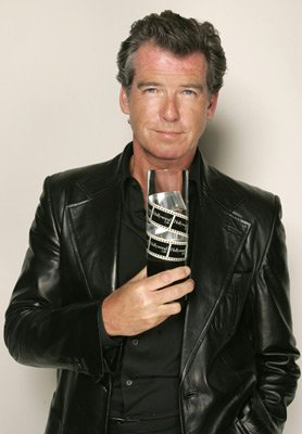 pierce brosnan leather jacket collection