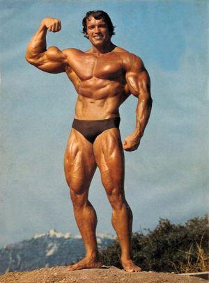Arnold Schwarzenegger posing trunks bodybuilder