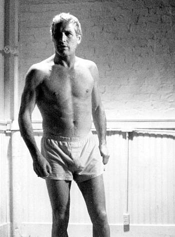 paul newman underwear bulge - boxer shorts
