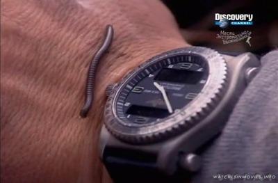 bear grylls breitling emergency watch
