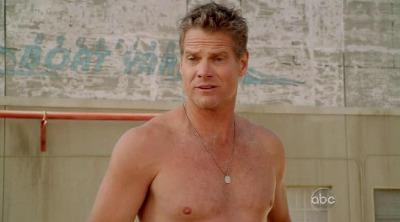 brian van holt shirtless daddy hunk
