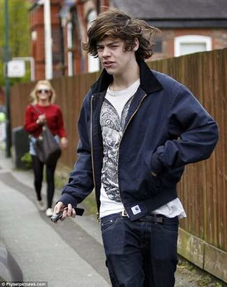 harry styles jacket by Adam Kimmel x Carhartt Aviator Jacket