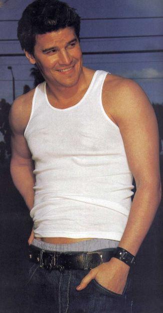 david-boreanaz-bulging-biceps