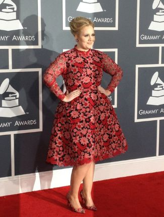 plus size celebrity red carpet 2013 - adele in valentino
