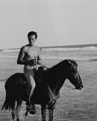 hot guys riding horses shirtless alain delon