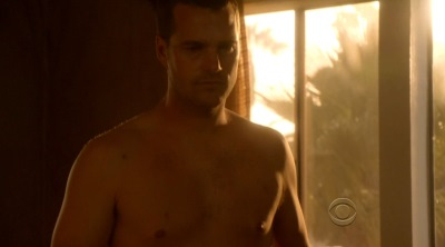 daddy hunks chris odonnell shirtless ncis