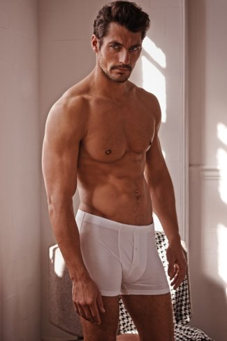 marks and spencers boxers underwear 2014 - david gandy