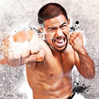 asian mma fighter - mark munoz 2