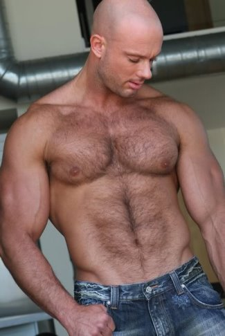 body hair men - bald apollo-phoenix_372