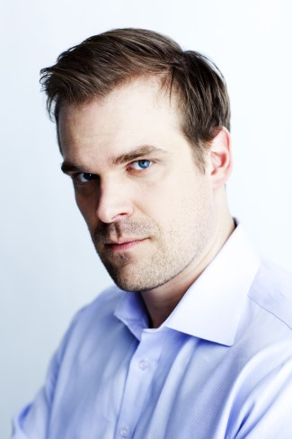 david harbour hot