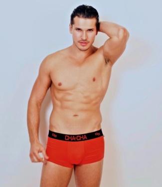 gleb savchenko underwear