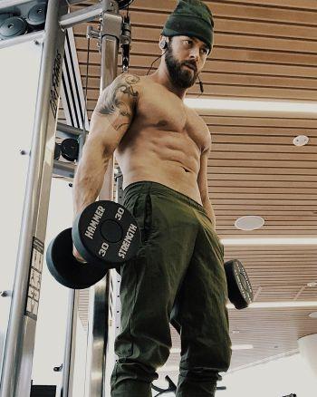 Artem Chigvintsev shirtless workout