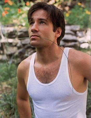 david duchovny young and hot